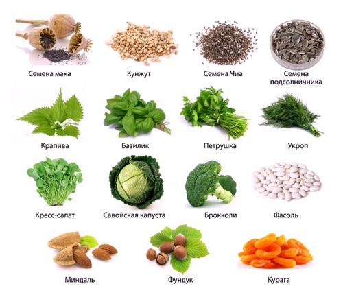 Продукты с большим содержанием кальция – наиболее полезны для кормящей  матери 08267bff988